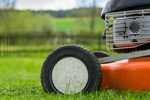 lawn care services in Omaha